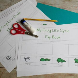 Free printable Frog Life Cycle Activity for preschoolers and toddlers to create their own flip book sequencing the stages from frog eggs to frog