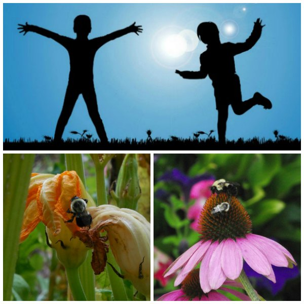 Code a message like a bee in dance - unplugged coding activity for kids
