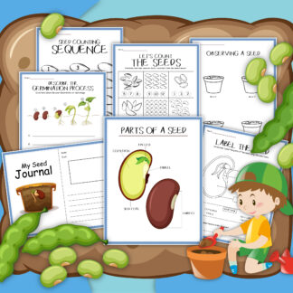 pages from a seed activity printable, including seed journal and simple math activities from counting objects 1 to 10 and numbers in sequence from 1 to 20