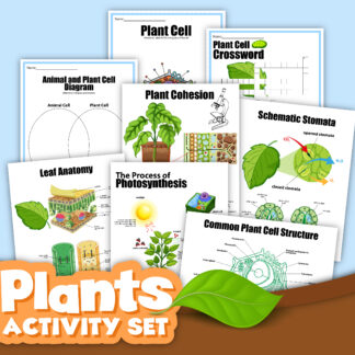 preview of the plants activity set from rainy day mum, all about plant cells and photosynthesis